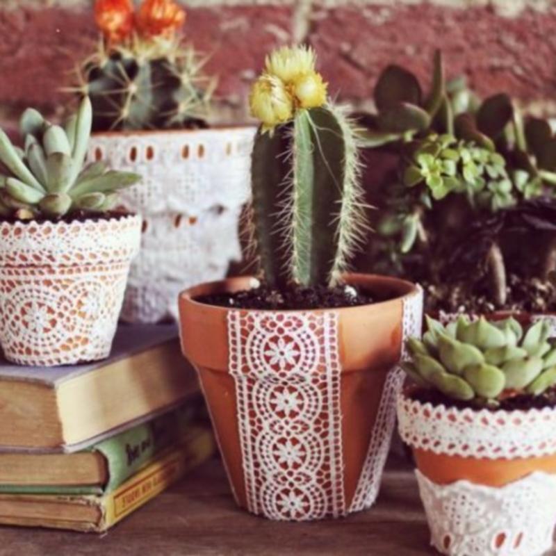 naminiai augalai nuo hipertenzijos